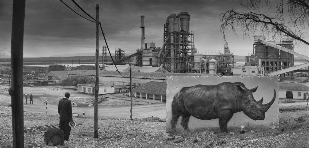 NICK BRANDT / FACTORY WITH RHINO