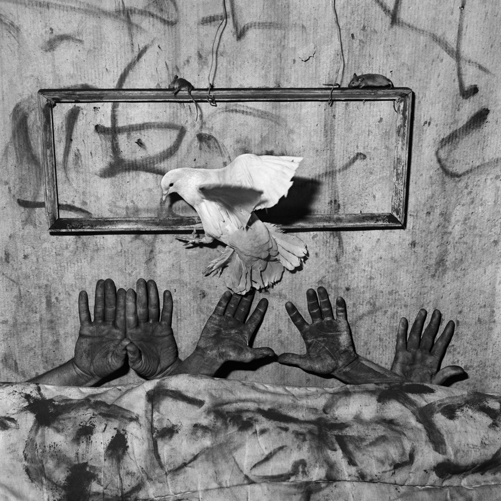 Roger Ballen -  Bilder Nordic School of Photography